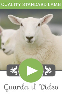 West Country Lamb Video